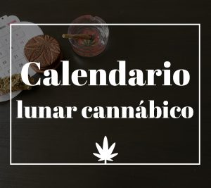 Calendario lunar cannábico